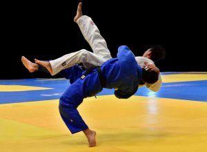 judo 300x220 - judo